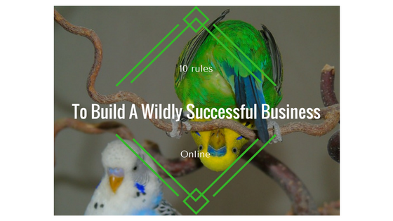 10 rules to build a wildly successful business